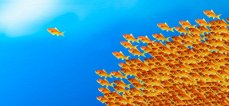sea-of-fish-leadership-1940x900_34782